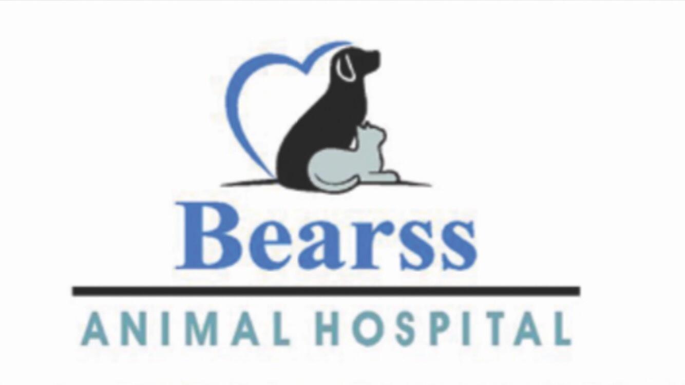 Bearss Animal Hospital logo